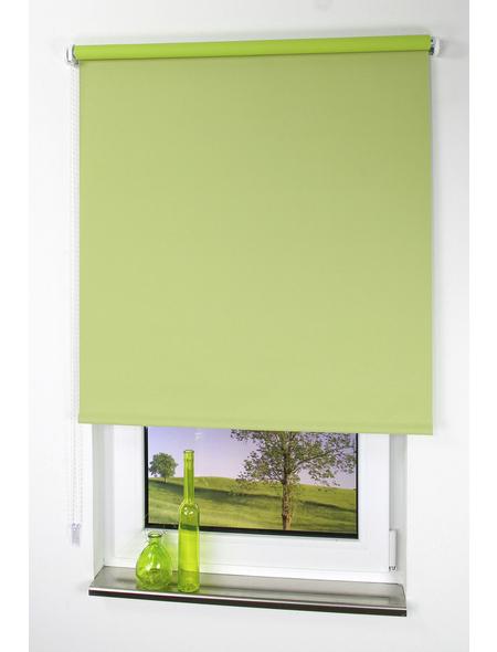 LIEDECO Seitenzug-Rollo, grün, Polyester