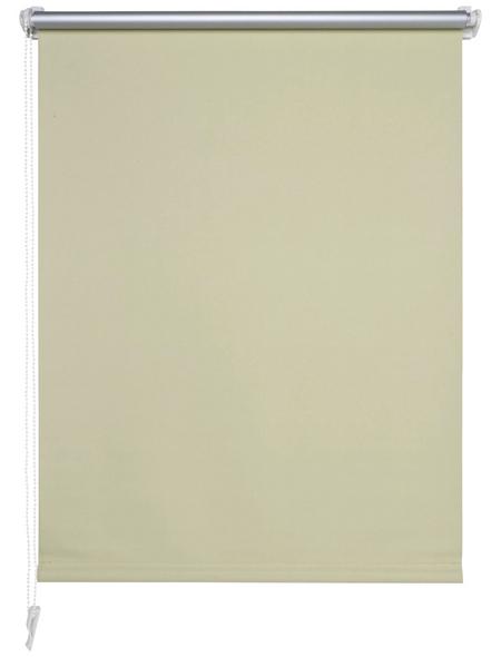 LIEDECO Seitenzug-Rollo, vanillefarben, Polyester