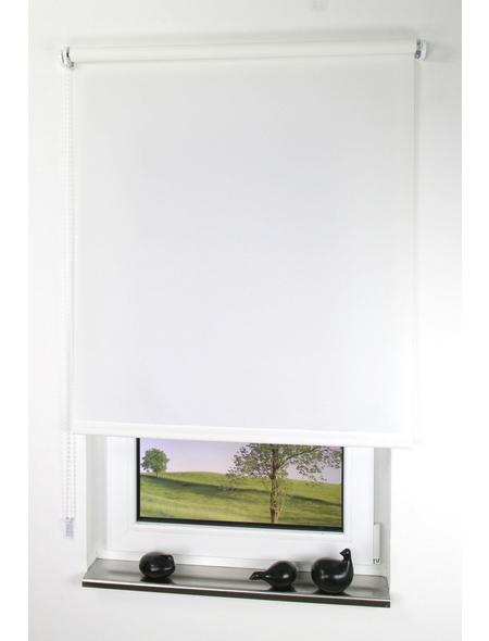 LIEDECO Seitenzug-Rollo, Weiß, Höhe: 180 cm