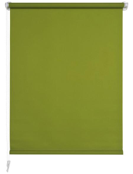 LIEDECO Seitenzugrollo, Grün, Höhe: 150 cm