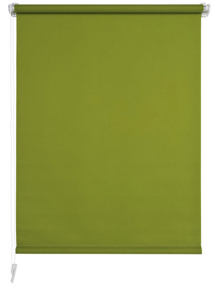 LIEDECO Seitenzugrollo, grün, Klemmfix, Polyester