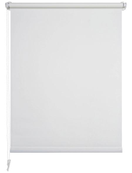 LIEDECO Seitenzugrollo, Weiß, Höhe: 150 cm