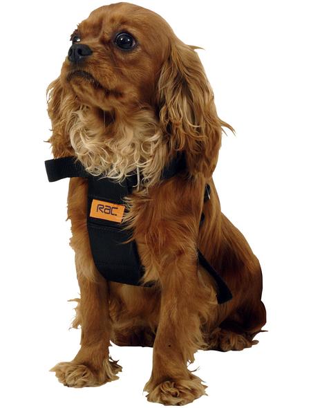 Sicherheitsgurt, für Hunde, Nylon, schwarz