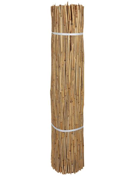 MR. GARDENER Sichtschutzmatte, Schilfrohr, HxL: 100 x 22 cm