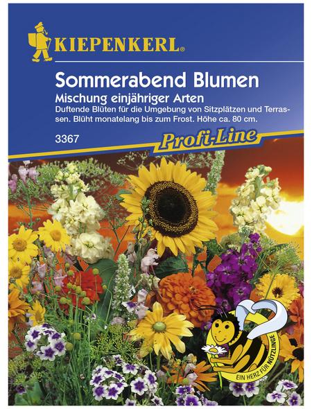 KIEPENKERL Sommerabend-Mischung, »Mischung«, Samen, Blüte: mehrfarbig
