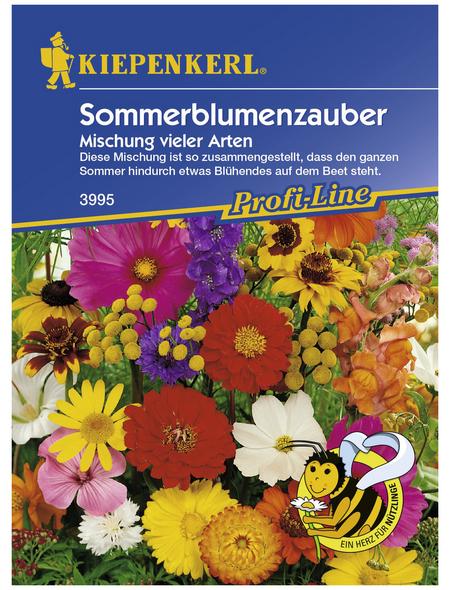 KIEPENKERL Sommerblumenzauber Mix, Mischung, Samen, Blüte: mehrfarbig