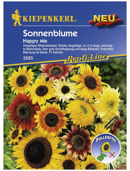 KIEPENKERL Sonnenblume, Valerianella locusta, Samen, Blüte: mehrfarbig