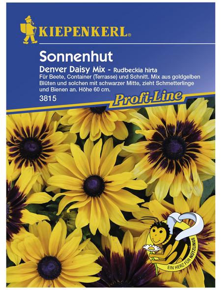 KIEPENKERL Sonnenhut, Rudbeckia hirta, Samen, Blüte: gelb
