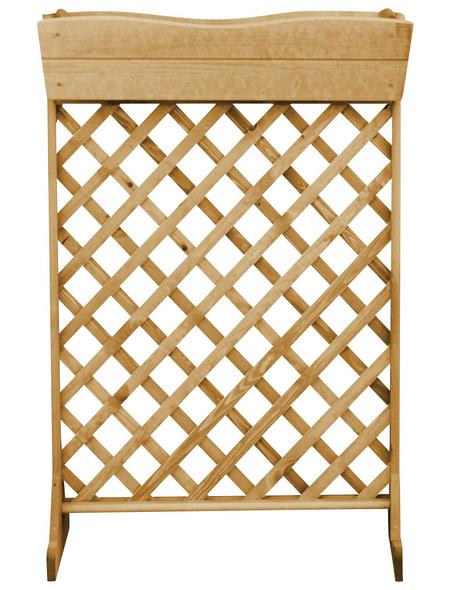 PROMADINO Spalierkasten, BxH: 70 cm x 106,5 cm, honig