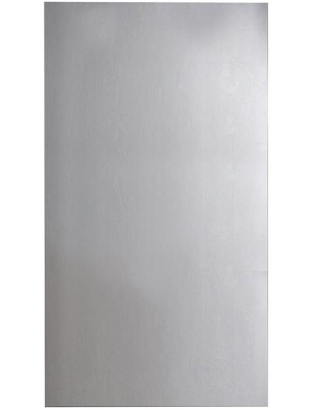 FACKELMANN Spiegel, B x H: 50  x  100 cm, eckig