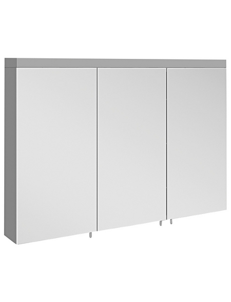 KEUCO Spiegelschrank »Royal Reflex 2«, 2-türig, BxH: 100 x 70 cm