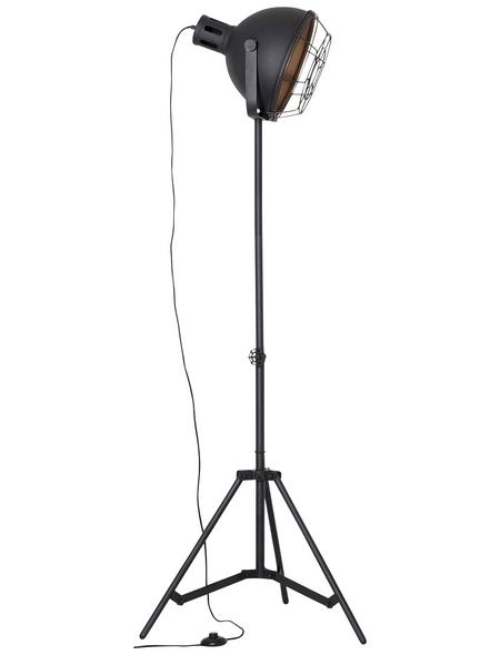 BRILLIANT Standleuchte schwarz mit 60 W, H: 166,50 cm, E27 ohne Leuchtmittel