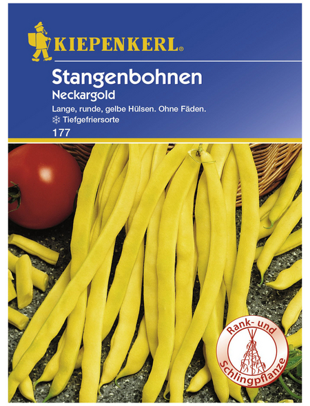 KIEPENKERL Stangenbohne vulgaris var. vulgaris Phaseolus »Nackargold«