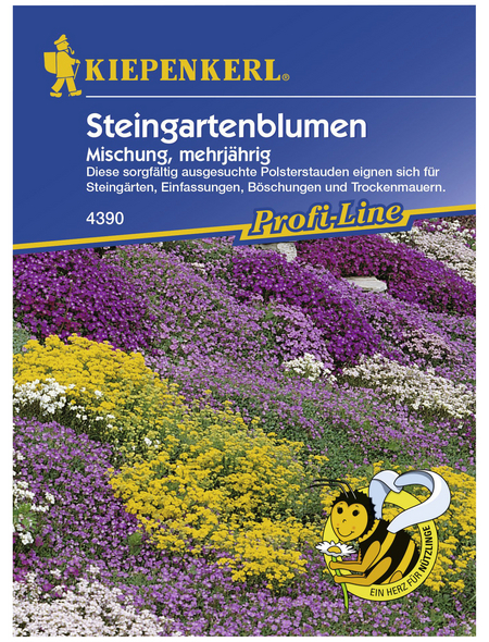 KIEPENKERL Steingartenblume, Samen, Blüte: mehrfarbig