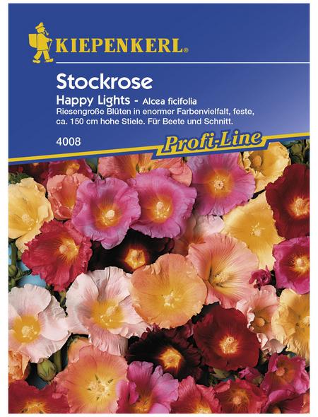 KIEPENKERL Stockrose, Alcea ficifolia, Samen, Blüte: mehrfarbig