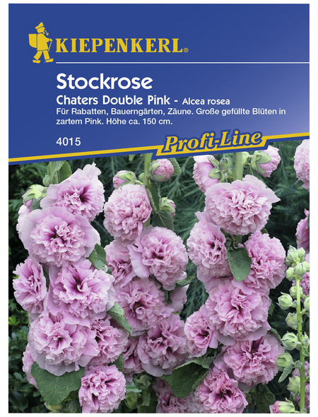 KIEPENKERL Stockrose, Alcea rosea rosea, Samen, Blüte: rosa
