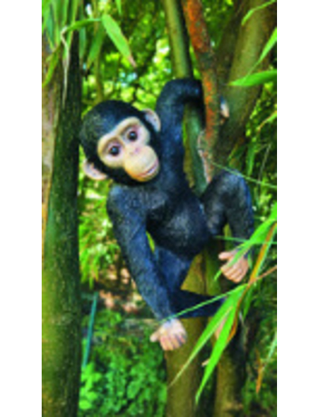 GRANIMEX Teichfigur »Jacob«, Schimpanse, Polystone, bunt