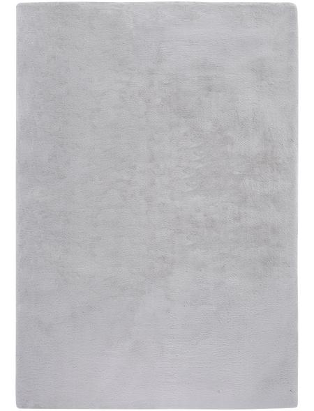 ANDIAMO Teppich, BxL: 67 x 140 cm, grau
