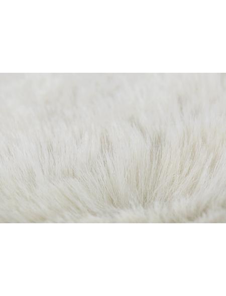 ANDIAMO Teppich »Cingoli«, BxL: 55 x 80 cm, beige