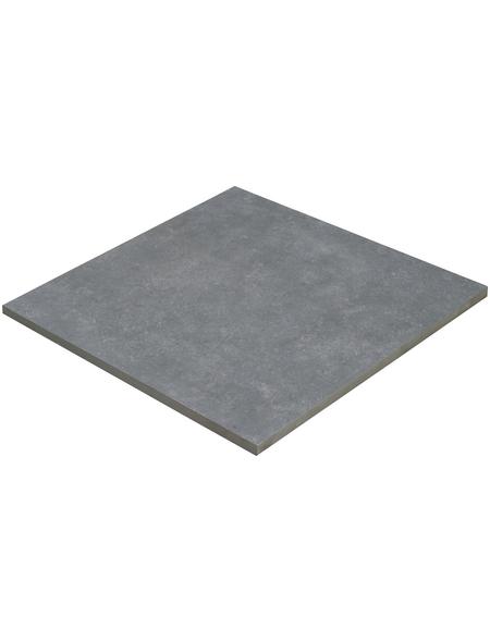MR. GARDENER Terrassenplatte »Bluestone«, aus Keramik, glasiert, Kanten: rektifiziert