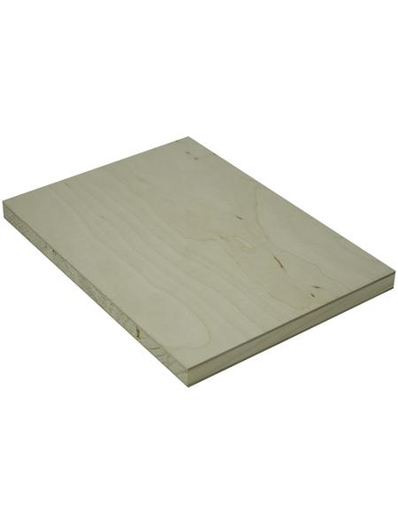 Tischlerplatte Birke, 1250x2500x16 mm, Natur