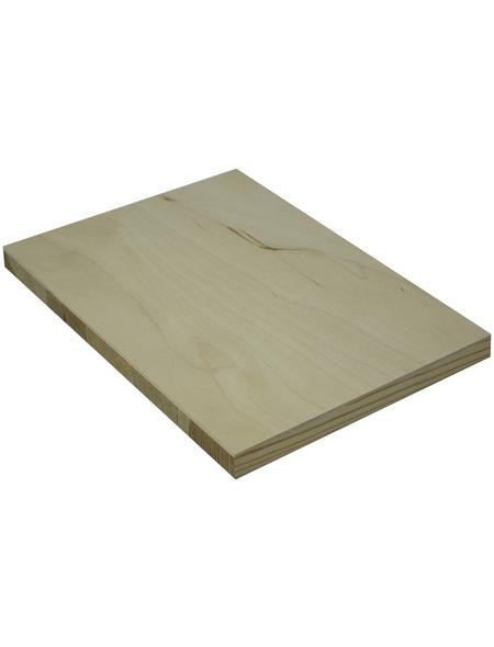 Tischlerplatte Birke, 1250x2500x18 mm, Natur