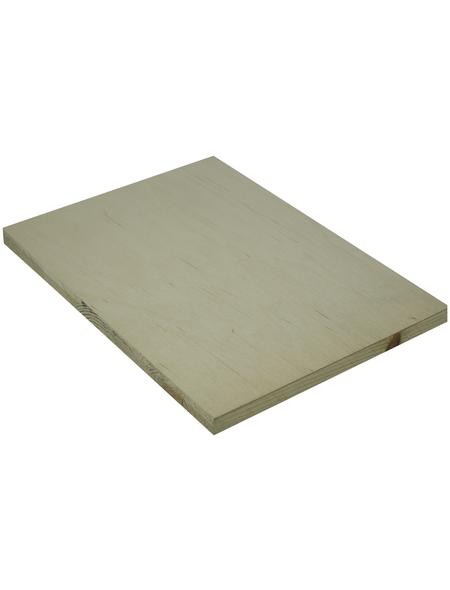 Tischlerplatte Birke, 1500x2500x13 mm, Natur