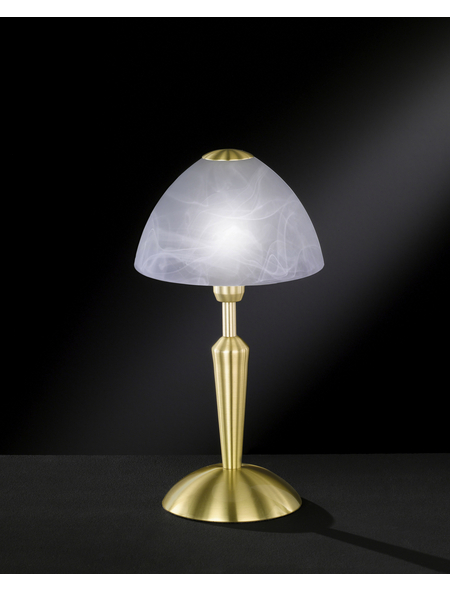 wofi® Tischleuchte »MORLEY«, 40  W, messingfarben, Höhe: 33  cm