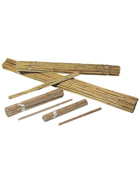 WINDHAGER Tonkinstäbe, bambus