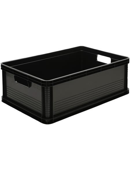 KEEEPER Transportbox, Kunststoff