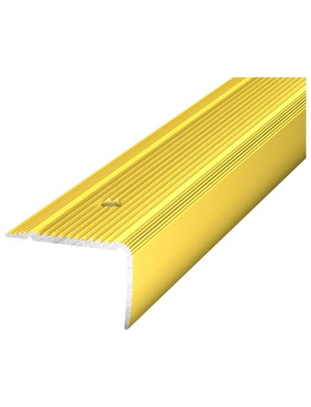 CARL PRINZ Treppenkantenprofil »NOVA«, LxBxH: 1000 x 30 x 20 mm
