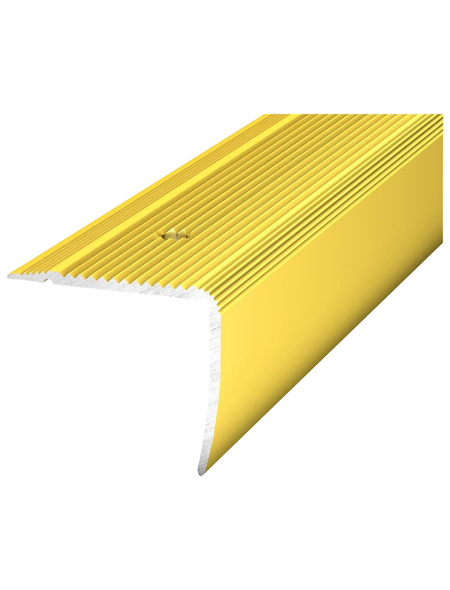 CARL PRINZ Treppenkantenprofil »NOVA«, LxBxH: 1000 x 35 x 30 mm