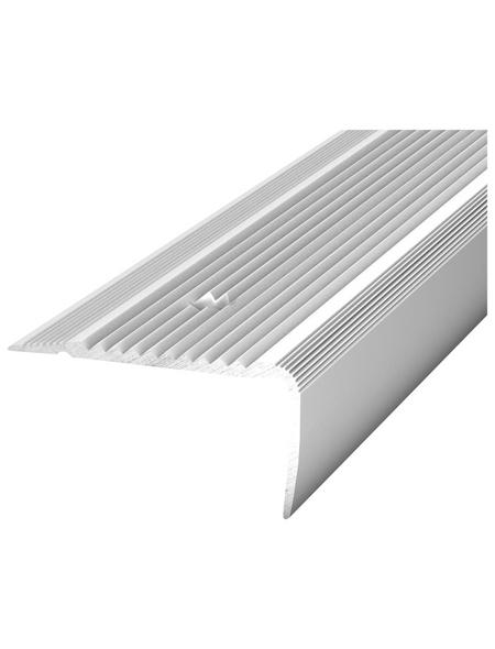 CARL PRINZ Treppenkantenprofil »NOVA«, silberfarben, BxLxH: 45 x 1000 x 23 mm