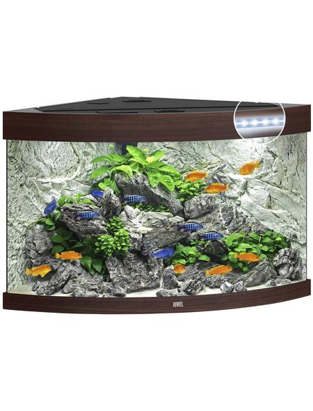 JUWEL AQUARIUM Trigon 190 LED Aquarium