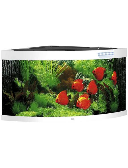 JUWEL AQUARIUM Trigon 350 LED Aquarium