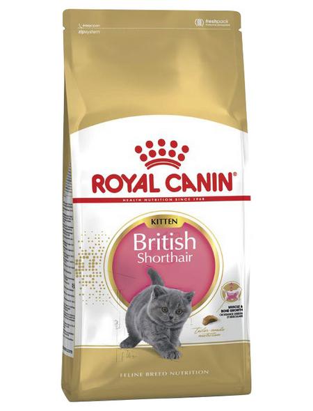 ROYAL CANIN Trockenfutter »FBN British Shorthair«, 2 kg