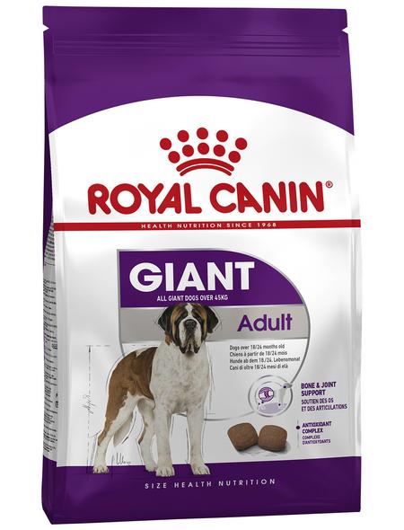 ROYAL CANIN Trockenfutter »SHN«, Inhalt: 15 kg
