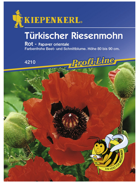 KIEPENKERL Türkischer Riesemohn, Papaver orientale, Samen, Blüte: rot
