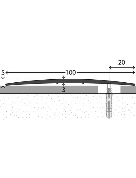 CARL PRINZ Übergangsprofil edelstahlfarben, BxLxH: 100 x 1000 x 5 mm