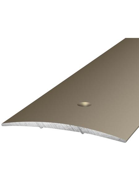 CARL PRINZ Übergangsprofil edelstahlfarben, BxLxH: 60 x 1000 x 5 mm