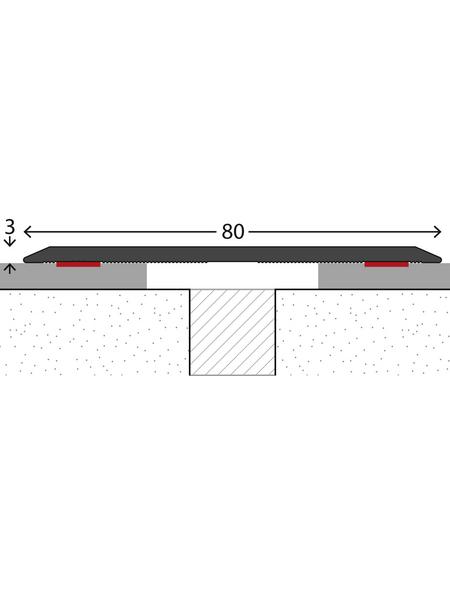 CARL PRINZ Übergangsprofil edelstahlfarben, BxLxH: 80 x 1000 x 3 mm