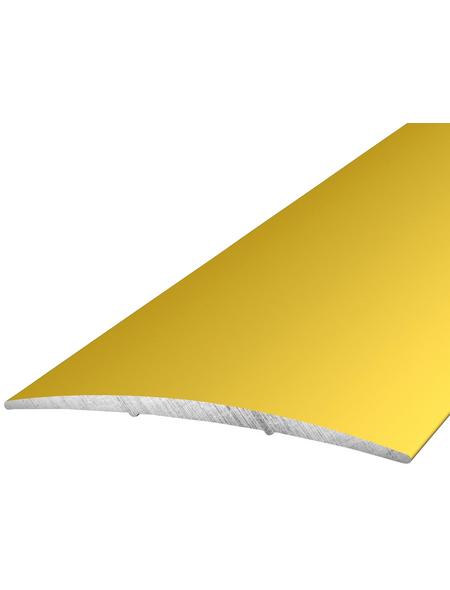 CARL PRINZ Übergangsprofil goldfarben, BxLxH: 60 x 1000 x 5 mm