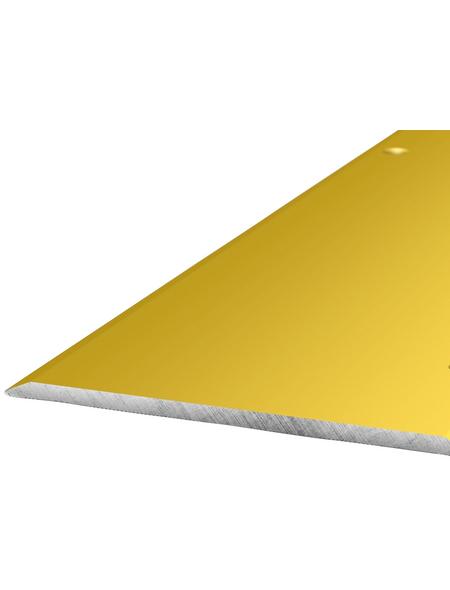 CARL PRINZ Übergangsprofil goldfarben, BxLxH: 80 x 1000 x 3 mm