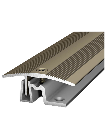 CARL PRINZ Übergangsprofil »PS 400«, edelstahlfarben, BxLxH: 38 x 1000 x 15 mm