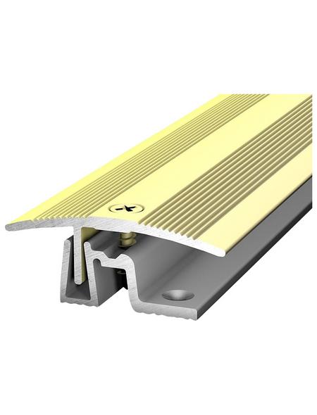 CARL PRINZ Übergangsprofil saharagelb, BxLxH: 38 x 1000 x 15 mm