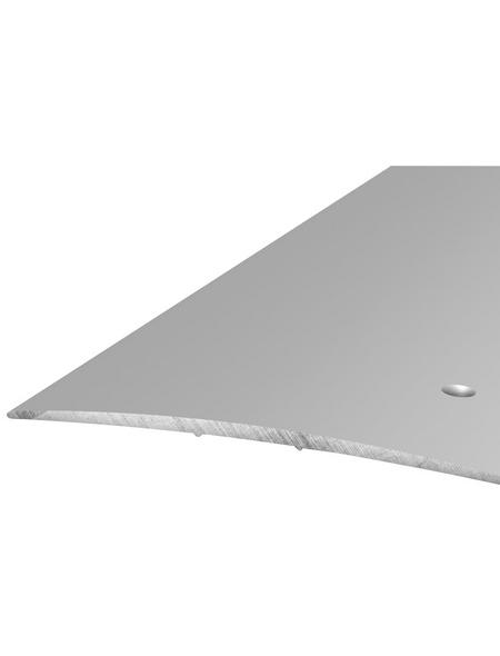 CARL PRINZ Übergangsprofil silberfarben, BxLxH: 100 x 1000 x 5 mm