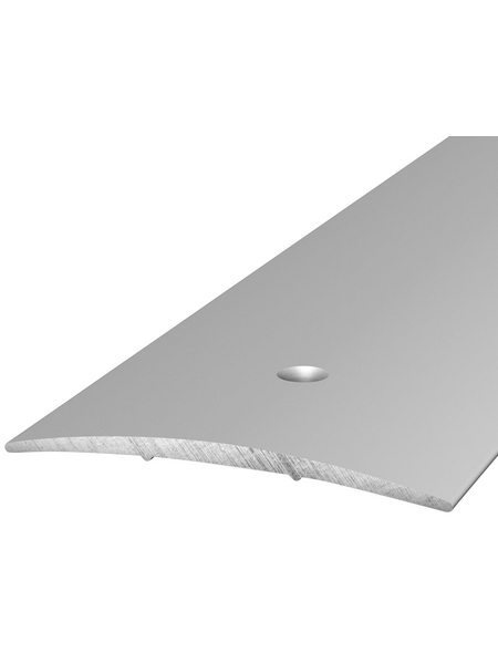 CARL PRINZ Übergangsprofil silberfarben, BxLxH: 60 x 1000 x 5 mm