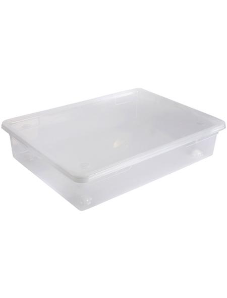 Rotho Unterbettbox »CLEAR «, BxHxL: 56 x 17 x 78 cm, Kunststoff