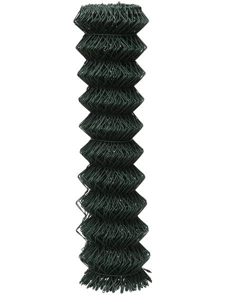 FLORAWORLD Viereckgeflecht, HxL: 200 x 2500 cm, grün
