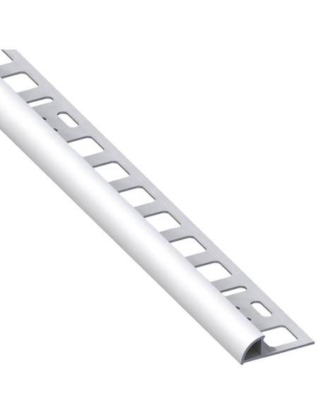 alfer® aluminium Viertelkreisprofil, BxHxL: 19,5 x 10 x 2500 mm, silberfarben
